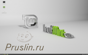 Оцениваем Linux Mint cinnamon
