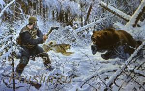 Серия холод, медведи