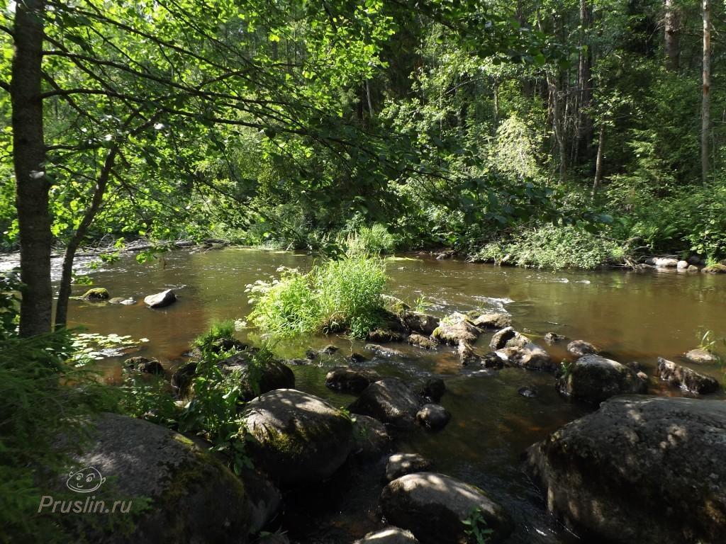 Линдуловская роща Река