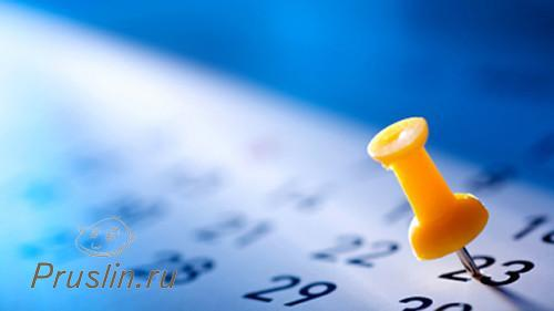 6. Установите сроки.