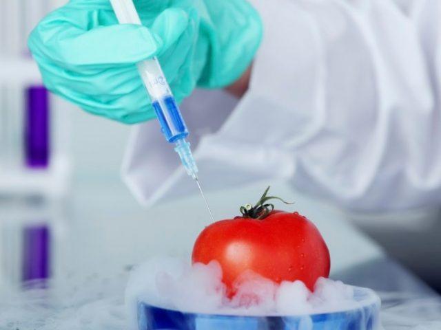 Миф о научной достоверности: марихуана, ГМО, аборты и прочее мракобесие