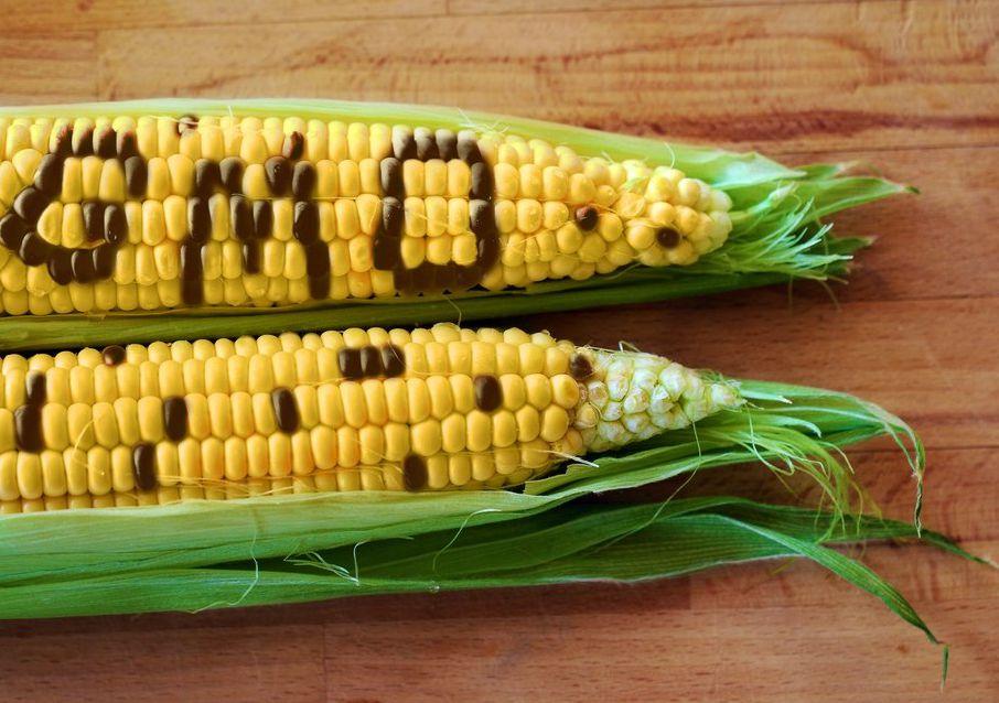Комиссия РАН по борьбе с лженаукой после запрета гомеопатии взялась за рекламу ГМО ядов