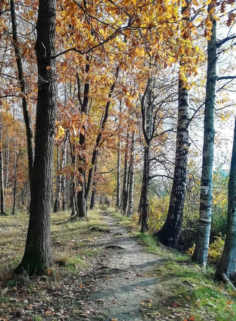 6 действенных способов как победить осеннюю хандру