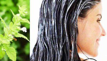 Топ-5 способов ускорить рост волос домашними средствами