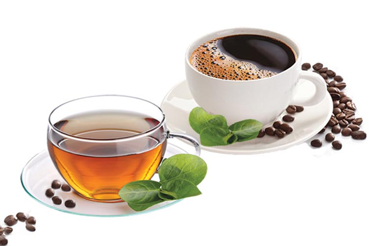 Теин и кофеин в чае